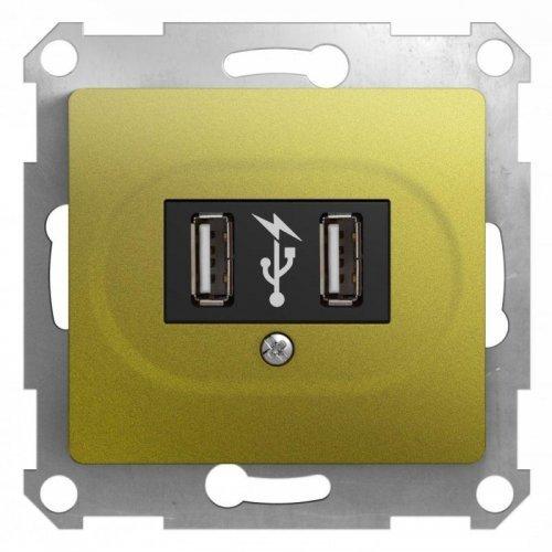 Механизм розетки USB 2-м Glossa фисташк. SchE GSL001032